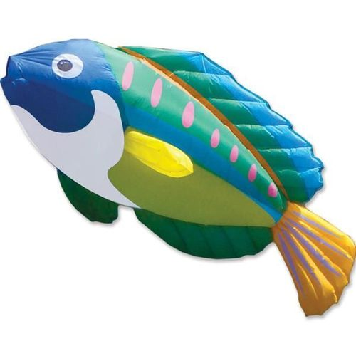 Windsack Peacock / Wrasse